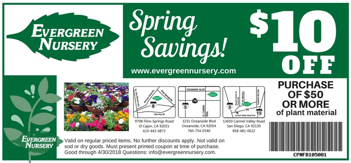 evergreen buy a discount coupon