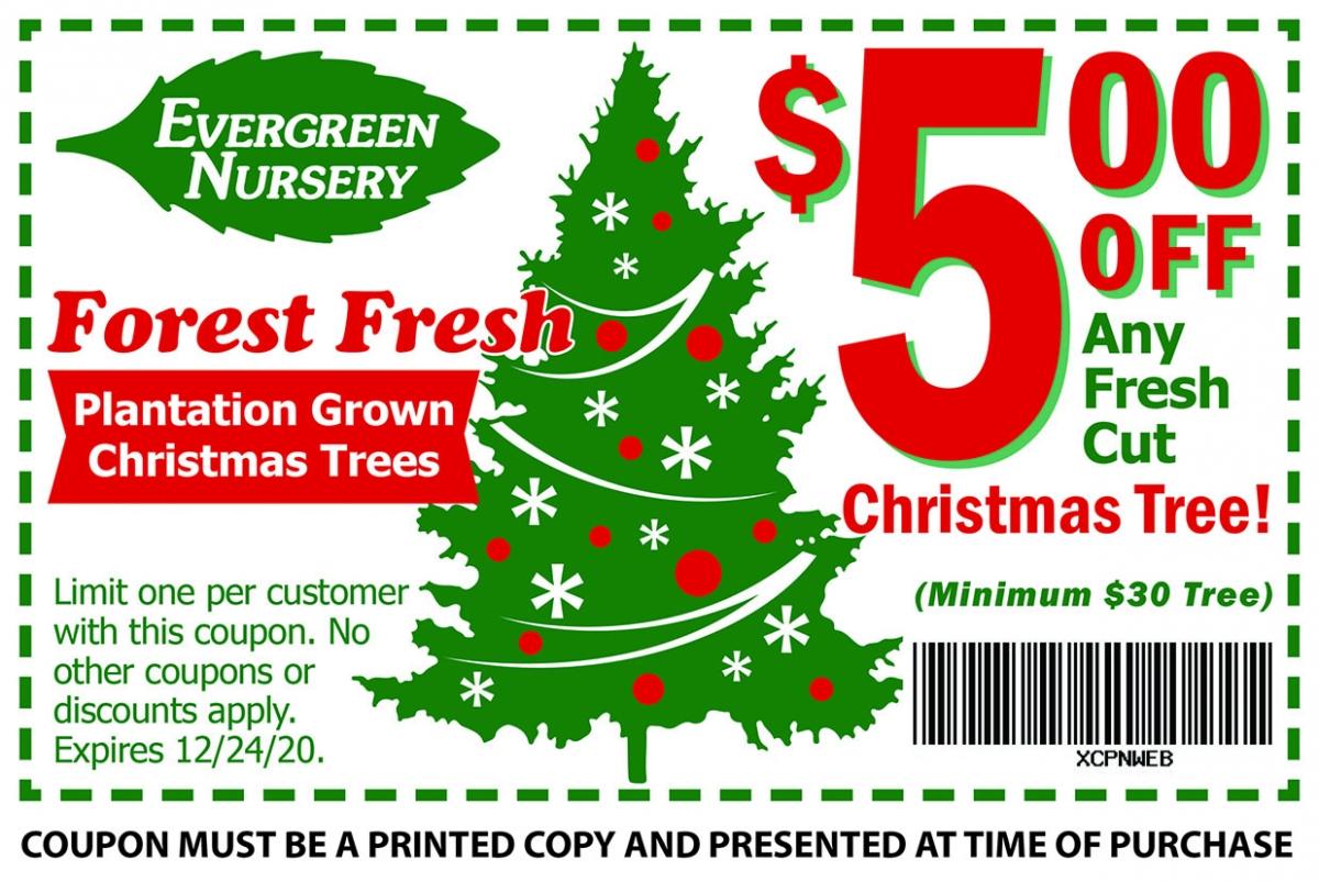 Evergreen Nursery Christmas 2020 Evergreen Nursery