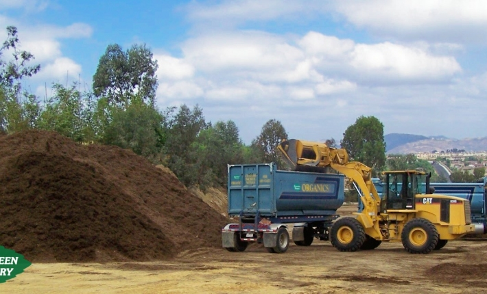 Evergreen Nursery Soil Amendments
