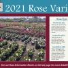2021 Rose Varieties
