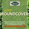 2019 Groundcovers