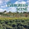 The Evergreen Scene book cover